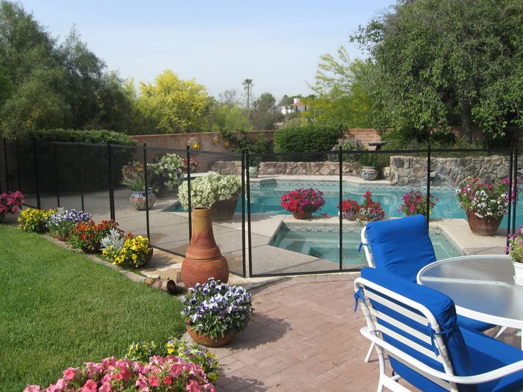 Pool Landscape Potted Plants Instead Of Bushes Honey