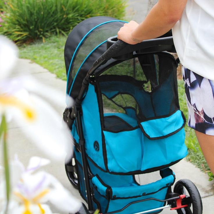 """Most beautiful, smooth, air-ventiliated ride you can ever give your pets! With large pockets and a large basket, you and your pets will both enjoy traveling our Mermaid Edition Pet Stroller 🌺💙  -  Product: Petique's One Hand Fold """"Mermaid"""" Pet Stroller  -  #petiquepets #petiquetravel #petiquestroller #petsofinstagram #petboutique #petblogger #pettravel #travelingpets #dogsofinstagram #catsanddogs #petstroller #petjogger"""