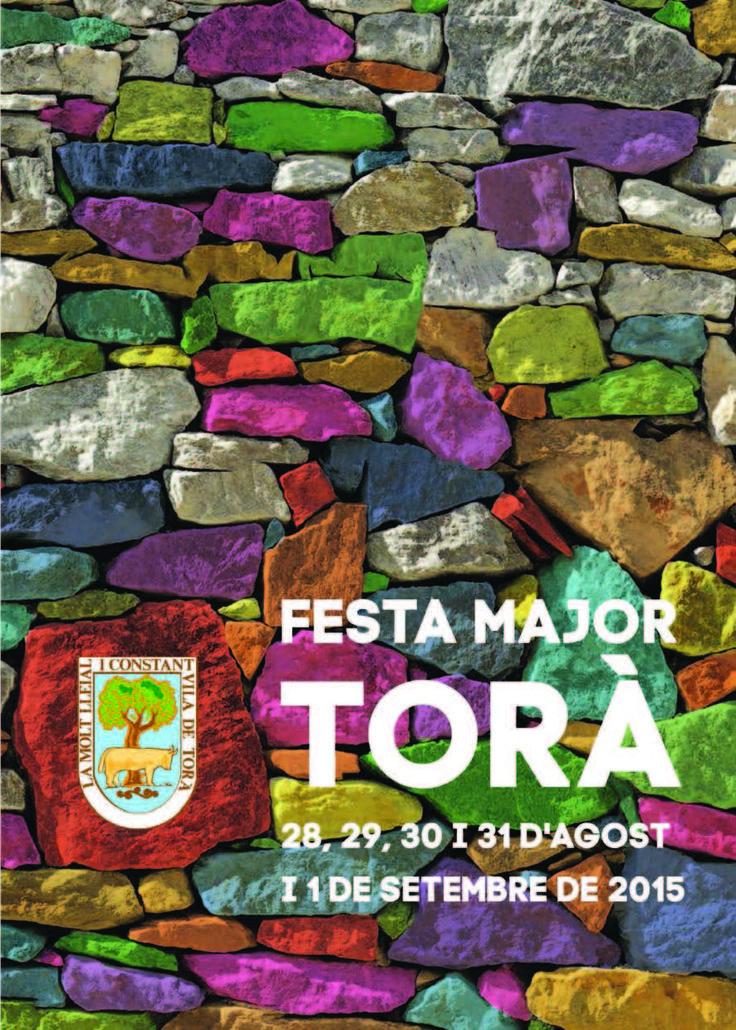 #diy #outdoor #ideas #colourful #wall #art #painted #stones #pared de #piedras #pintadas