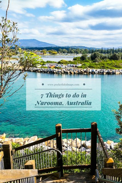 7 Things to do in Narooma