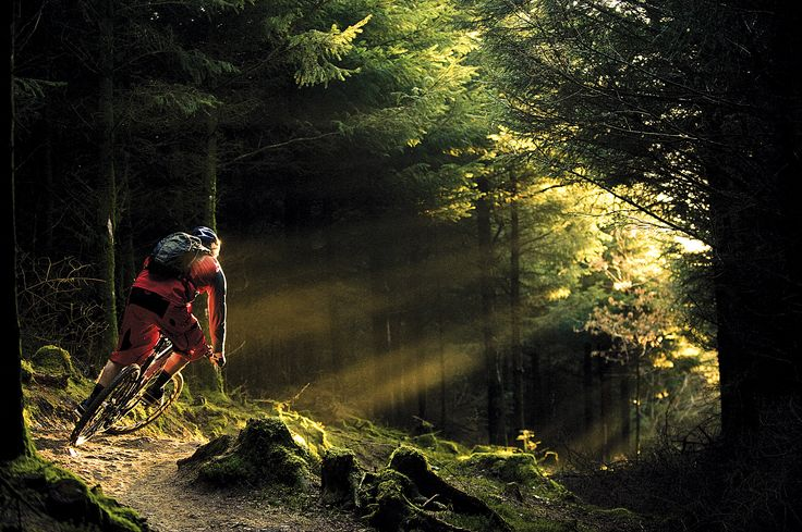 Pics For > Specialized Mountain Biking Wallpaper | Pasion ...