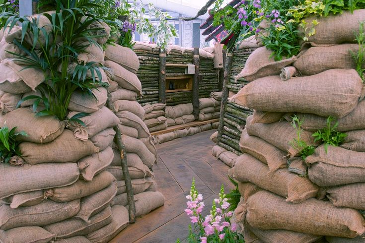 Chelsea Flower Show commemorates 100 years since the beginning of WW1.