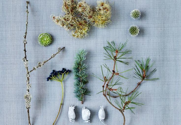 Blomsterdesigner Annette von Einem elsker julen – her får du hendes nye ideer til at dekorere dit hjem i december. Kranse til døre, advent eller bordet sammen med to smukke buketter og pynt til julens fester.