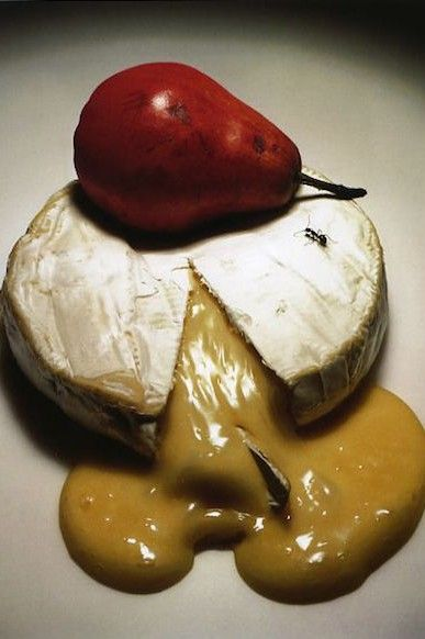 Irving Penn Fashion Photography Camembert Cheese                                                                                                                                                     Plus