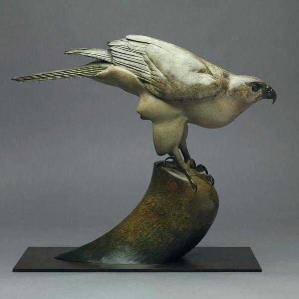Bronze Birds Sculptures or statue by artist Nick Bibby titled: 'Goshawk (bronze life size Goshawk Perched Bird of Prey statue)'