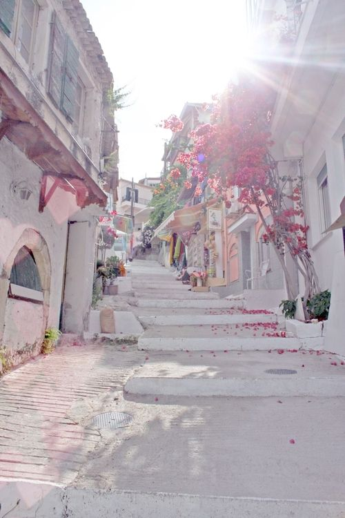 Spring Blossoms falling on the old city streets of beautiful Capri ~ Italy