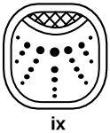 14-04__Day Sign: Ix (East) Ix Jaguar - (pronounced: eesh) Key meaning: investigation and healing. Day Sign: Ix (East) Ix - (pronounced: eesh) Key meaning: investigation and healing      Magician     Night seer     Integrity     Shaman     Healer     Secrets     Psychic     Heart Knowing     Sensitive     Stealth     Earth magic