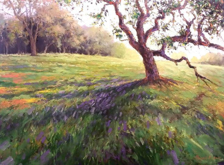 Landscape - California - Mason Mansung Kang