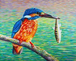 Birds Kingfisher and Fish by simon-knott-fine-artist at zippi.co.uk