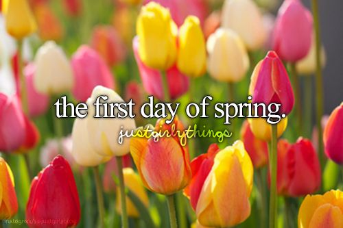March 20th is the first official day of Spring! I'm so happy, I am so d o n e with the snow!