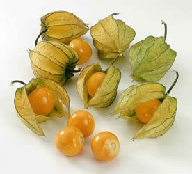 Poha (Cape Gooseberry). There were a lot of this fruit in my hometown.