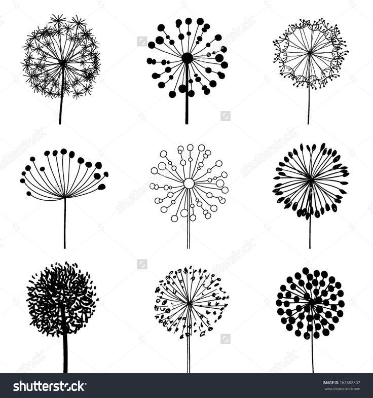 Floral Elements for design, dandelions. EPS10 Vect…
