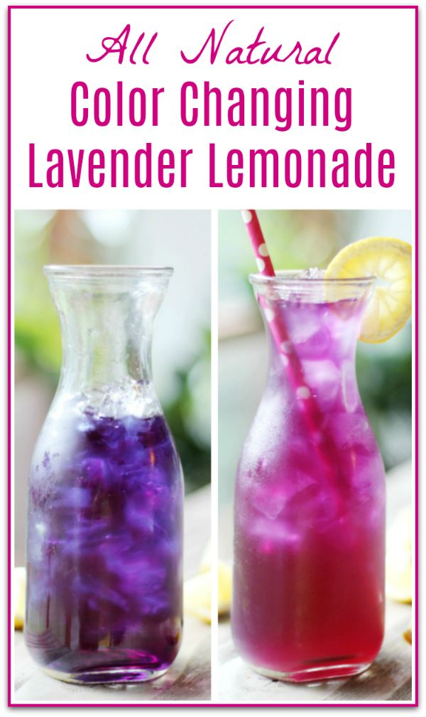 Butterfly Pea Flower Lavender Lemonade Magic Lemonade So Fun Lavender Lemonade Butterfly Pea Flower Lemonade Recipes