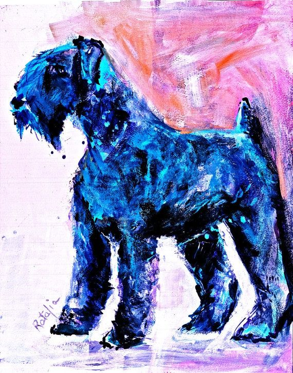 1000 Images About Kerry Blue Terrier On Pinterest
