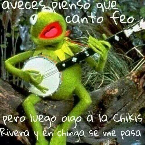 17 Best Images About Kermit Miss Piggy On Pinterest: 17 Best Images About Kermit & Miss Piggy Memes On