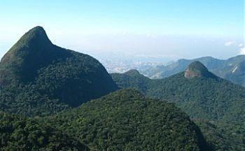 A Floresta Cercada pela Cidade -  Alto da Boa Vista no coração do Rio de Janeiro - Brasil. A Floresta da Tijuca é a maior floresta urbana do mundo, com uma área de 3.200 hectares de Mata Atlântica, reflorestada em 1861. Possui diversas espécies de flora e fauna. Tem mirantes, cachoeiras e trilhas.  O melhor é conhecer o lugar na companhia de um guia. A trilha do Pico da Tijuca permite um visual incrível de 360°da cidade. http://entretenimento.br.msn.com/guias-rj/floresta-da-tijuca
