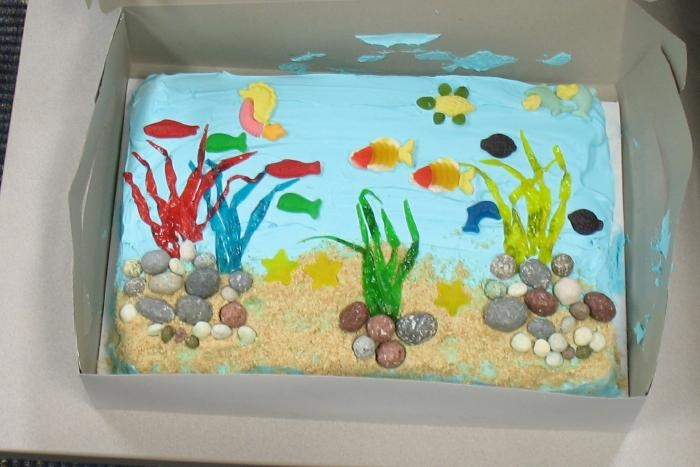 17 best images about fish tank on pinterest cerebral for Fish tank cake designs