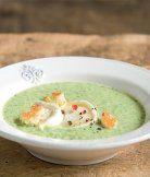 Brokolicová polévka s krutony (Apetit kuchařka Polévky)
