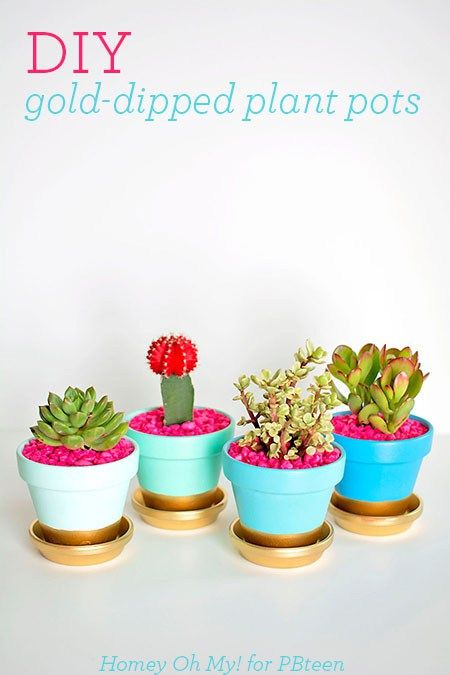 DIY Gold-Dipped Plant Pots