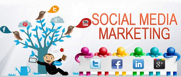 WebDragons provides cost effective social media marketing and digital marketing services in Chennai.For More Details Call +91-9840582580.
