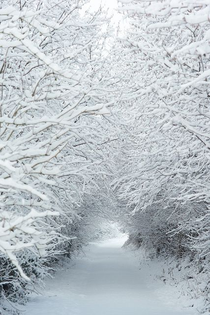 Snow - Somerset, England