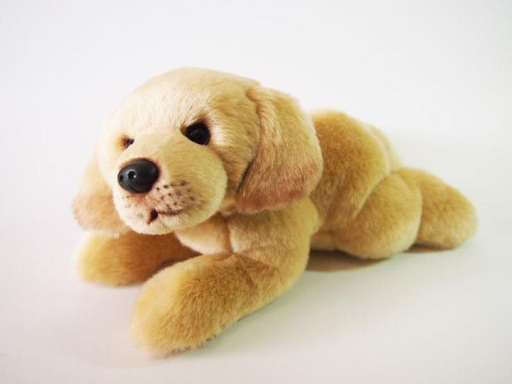 CUDDLY CRITTERS SOFT PLUSH YELLOW LABRADOR DOG BAILEY I COOL CAT COLLECTABLES