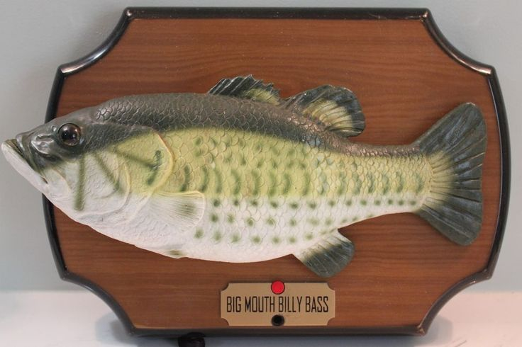25 best ideas about singing fish on pinterest circle for Talking bass fish