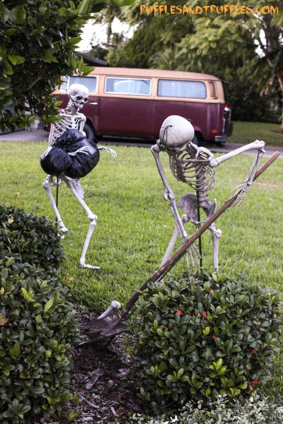 Instructions for how to pose a set of skeletons in your yard for Halloween!
