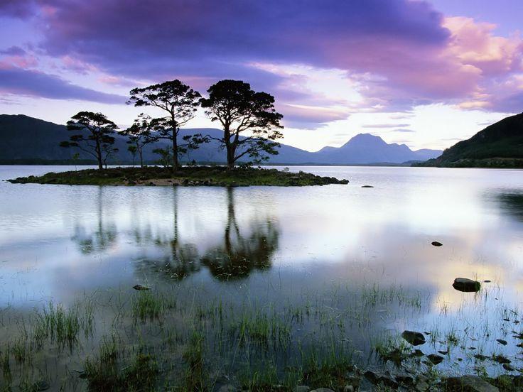 natuur landschap - Google Search