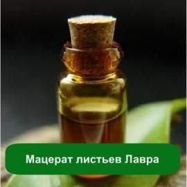 Мацерат листьев лавра при варке аллепского мыла ручной работы, приготовлении натуральных масок и скрабов, составлении шампуней, мазей и кремов.