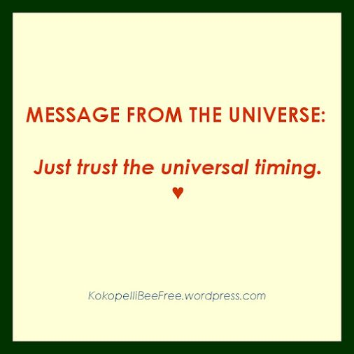 MESSAGE FROM THE UNIVERSE Universal Timing | #KokopelliBeeFree #KBFMessagesFromTheUniverse #UniversalTiming
