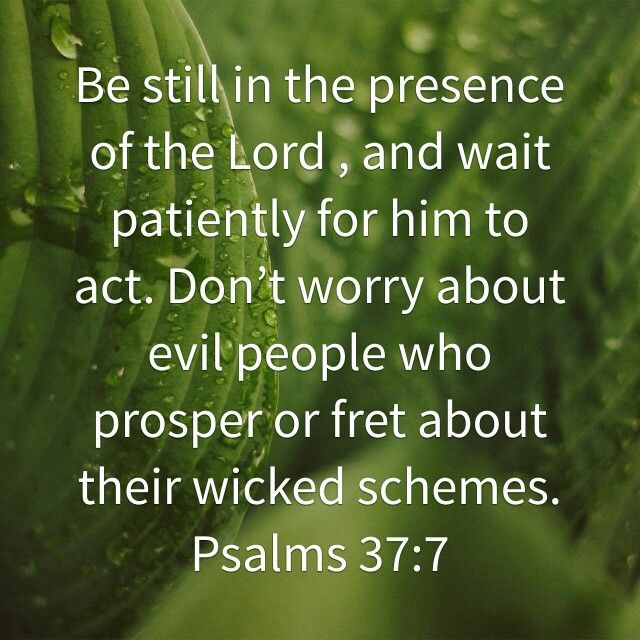 Psalms 37:7 Dont worry about evil people and their schemes. Trust in the Lord and wait for Him to act.