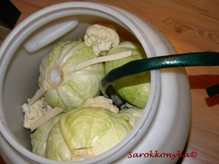 A savanyú káposztát az év minden időszakában megesszük, szeretjük. Jöhet csak felcikkezve, kevés olajjal meglocsolva salátaként, hússal ...