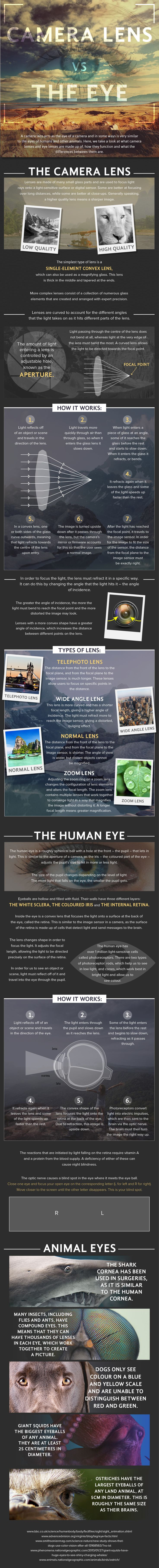 Camera Lens vs. The Eye 1