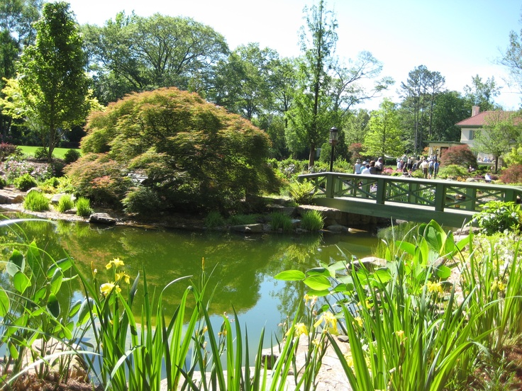 Pond And Bridge With Nice Maple   Photographed By Heather Moll Dunn  Landscape And Garden