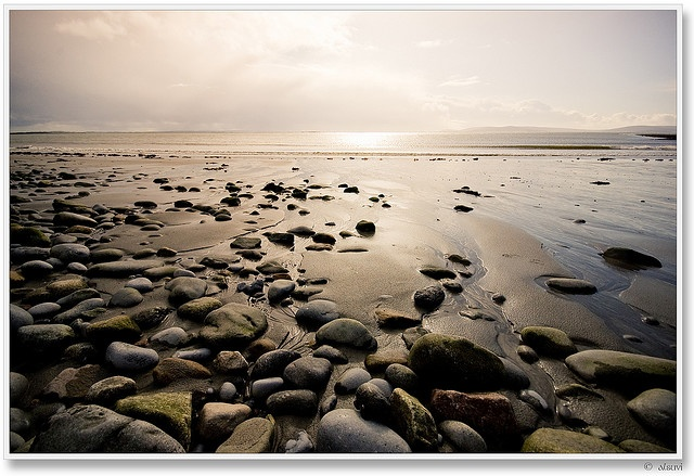 Taupe: Salthill beach, Co. Galway, Ireland.