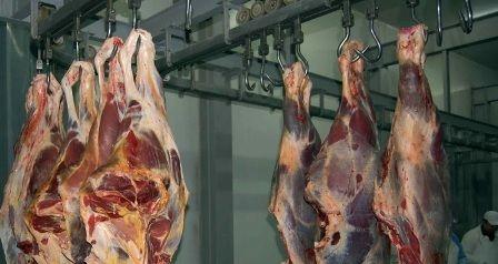 Câteva secrete ale industriei cărnii din România  Aditivii sintetici din semipreparatele din carne rămân în organism chiar şi zece ani pentru că tubul digestiv nu le poate digera. Efectul imediat este apariţia gastritelor şi a ulcerelor iar în timp unul dintre cele mai urâte forme de cancer  cel colorectal. Consumul anual de mezeluri în România este de aproximativ 10 kilograme pe cap de locuitor ceea ce înseamnă că în fiecare zi un român mănâncă cam 30 de grame de preparate din carne. Media…