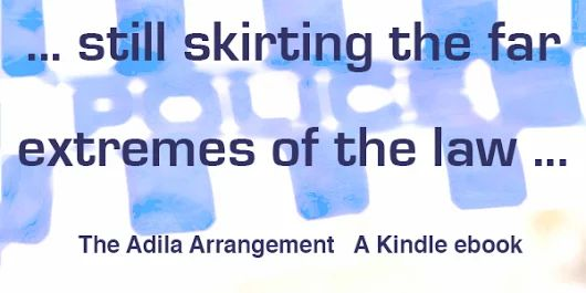 The Adila Arrangement by Jai Baidell. Available from Amazon.