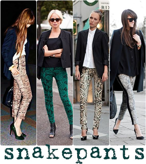 I just received a pair of snake print pants, Had to see how to wear them...