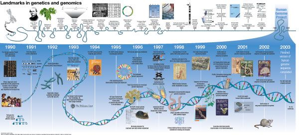 Brilliant DNA history timeline http://www.nature.com/nature/journal/v422/n6934/pdf/timeline_01626.pdf