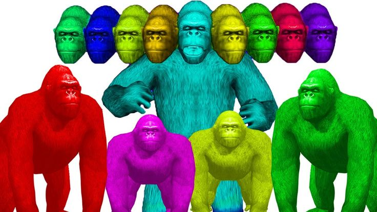 Learn Colours Gorilla Finger Family | Colors With Animals For Children K...