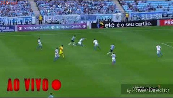Assistir Avaí x Grêmio Ao Vivo em HD 29/10/2017