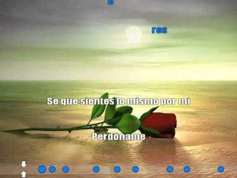 Doce rosas lyrics