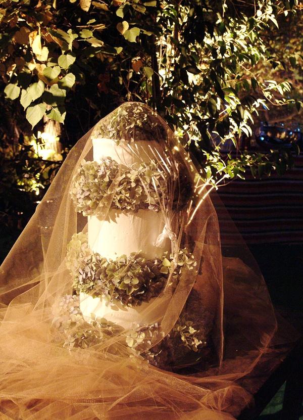 Que linda torta! Matrimonio Ignacio y Amalia en Santiago.
