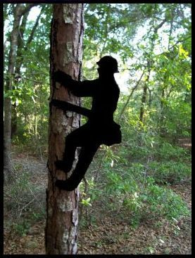 $27.50 includes shipping! Every power lineman would enjoy receiving a silhouette of a lineman for his mailbox, trees in the yard, fence, at work, etc. The possibilities are endless! ENJOY and HAVE FUN with this!