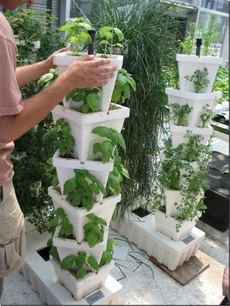 Vertical Garden | Vertical Gardening Vertical Garden System Vertical  Cultivation .