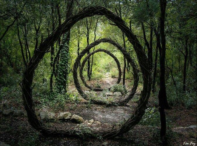 Spencer Byles a passé douze mois à arpenter les forêts de La Colle-sur-Loup, Villeneuve-Loubet et Mougins (toutes situées dans les Alpes-Maritimes). Une expérience d'immersion qui a grandement inspiré ce prolifique « sculpteur des bois »