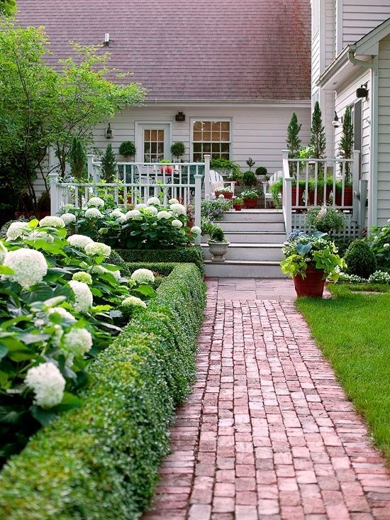 Hydrangeas and boxwood work stunningly together in small