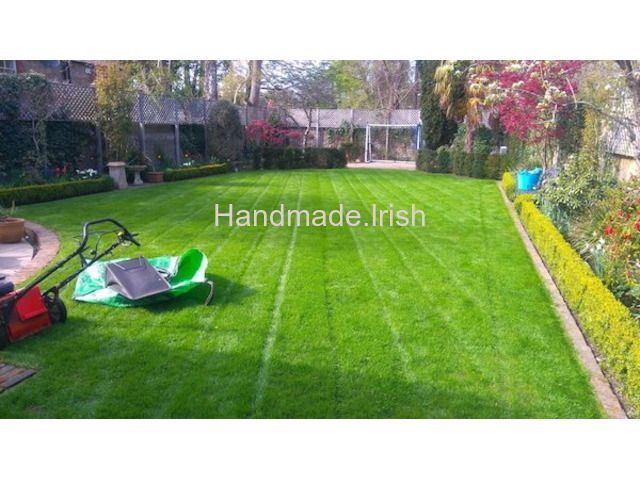 Lawn Care Scarifying Moss Removal Aerating