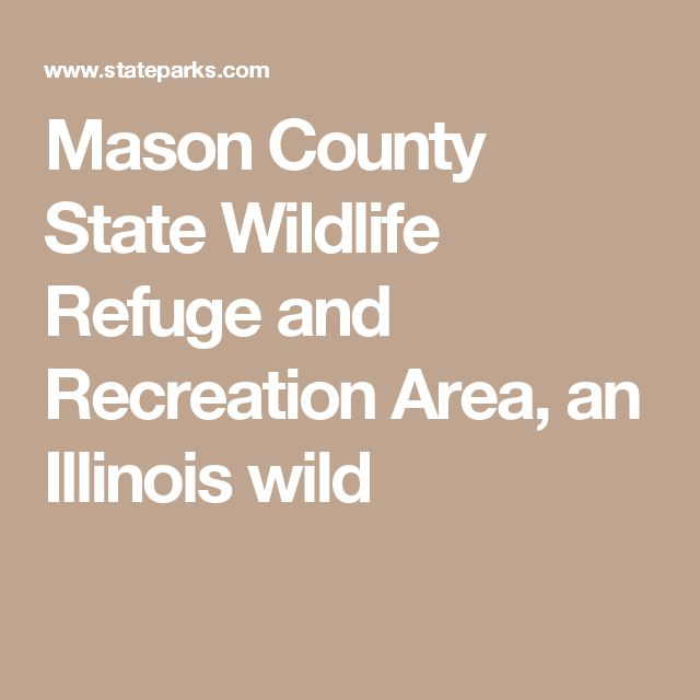 Mason County State Wildlife Refuge and Recreation Area, an Illinois wild
